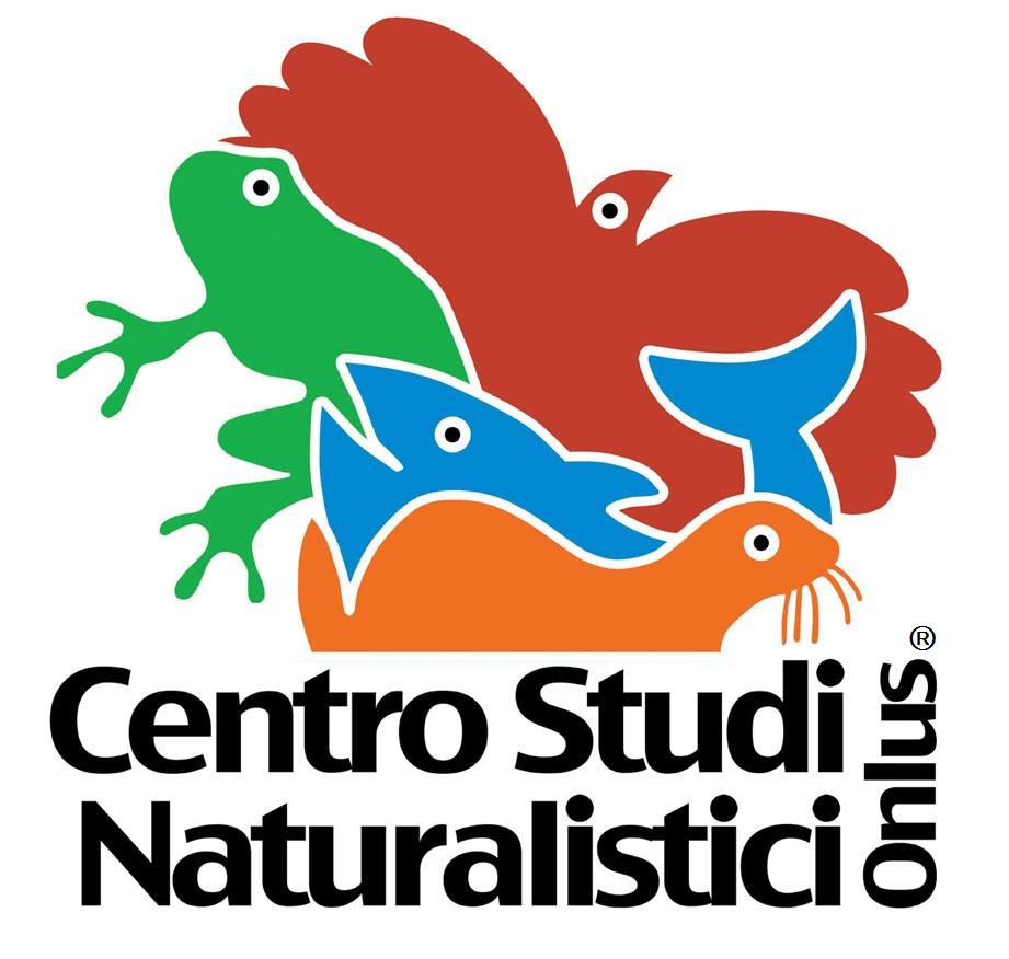 logo CSN onlus_R_2010